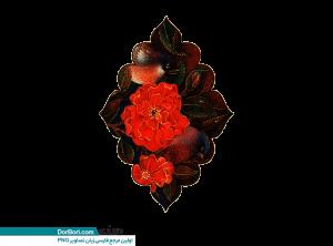 گل و مرغ-003