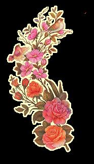 گل و مرغ-۰۱۰