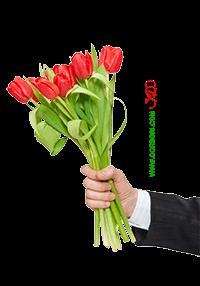 دسته گل لاله سرخ